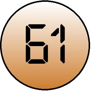 Webprofil-Score 61