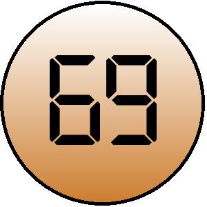 Webprofil-Score 69